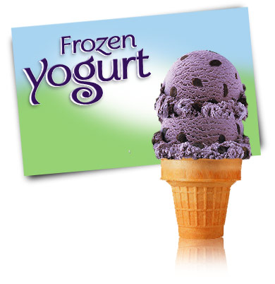 Turkey Hill Black Raspberry Chocolate Chip Frozen Yogurt
