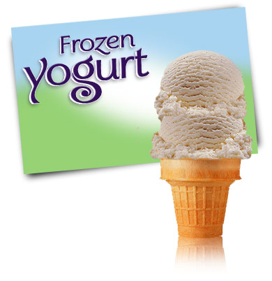 Turkey Hill Vanilla Bean Frozen Yogurt