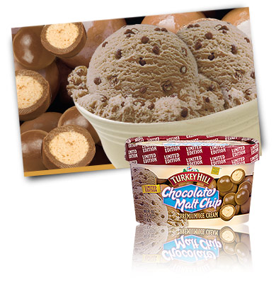 Turkey Hill Chocolate Malt Chip - Limited Edition Premium Ice Cream