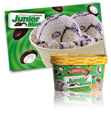 Turkey Hill Junior® Mint Premium Ice Cream