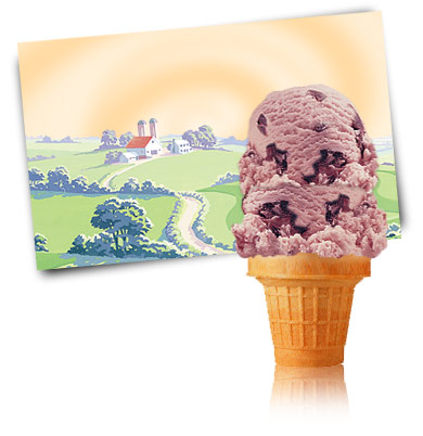 Turkey Hill Black Cherry Premium Ice Cream