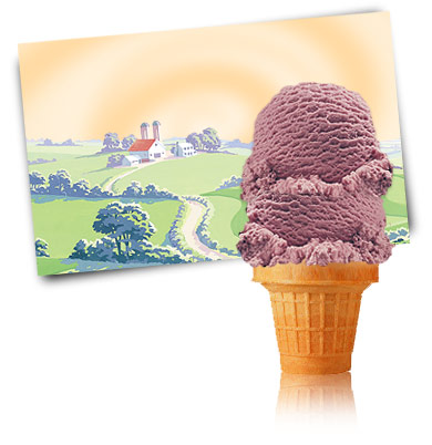 Turkey Hill Black Raspberry Premium Ice Cream