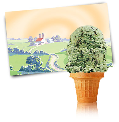 Turkey Hill Choco Mint Chip Premium Ice Cream