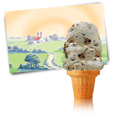 Turkey Hill Chocolate Chip Cookie Dough Premium Ice Cream
