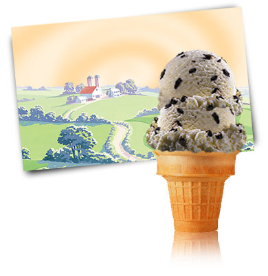 Turkey Hill Chocolate Chip Premium Ice Cream