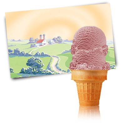 Turkey Hill Teaberry Premium Ice Cream