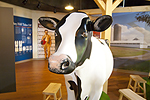 Turkey Hill Experience Milking Cow Exhibit