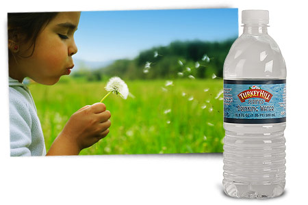 Turkey Hill Bottled Drinking Water