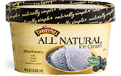 Blueberry All Natural Ice Cream