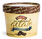 Chocolate Chocolate Chip Gelato