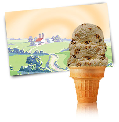 Turkey Hill Maple Walnut Premium Ice Cream